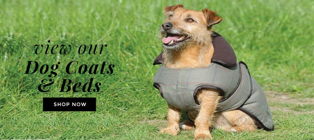 View Our Dog Coats & Beds